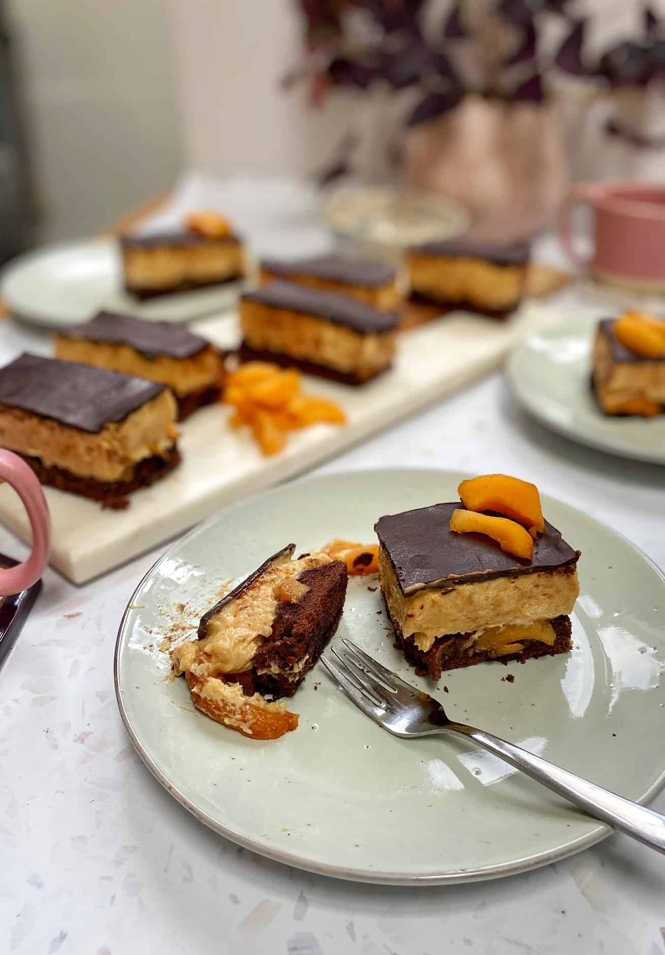 chocolate apricot mousse cake