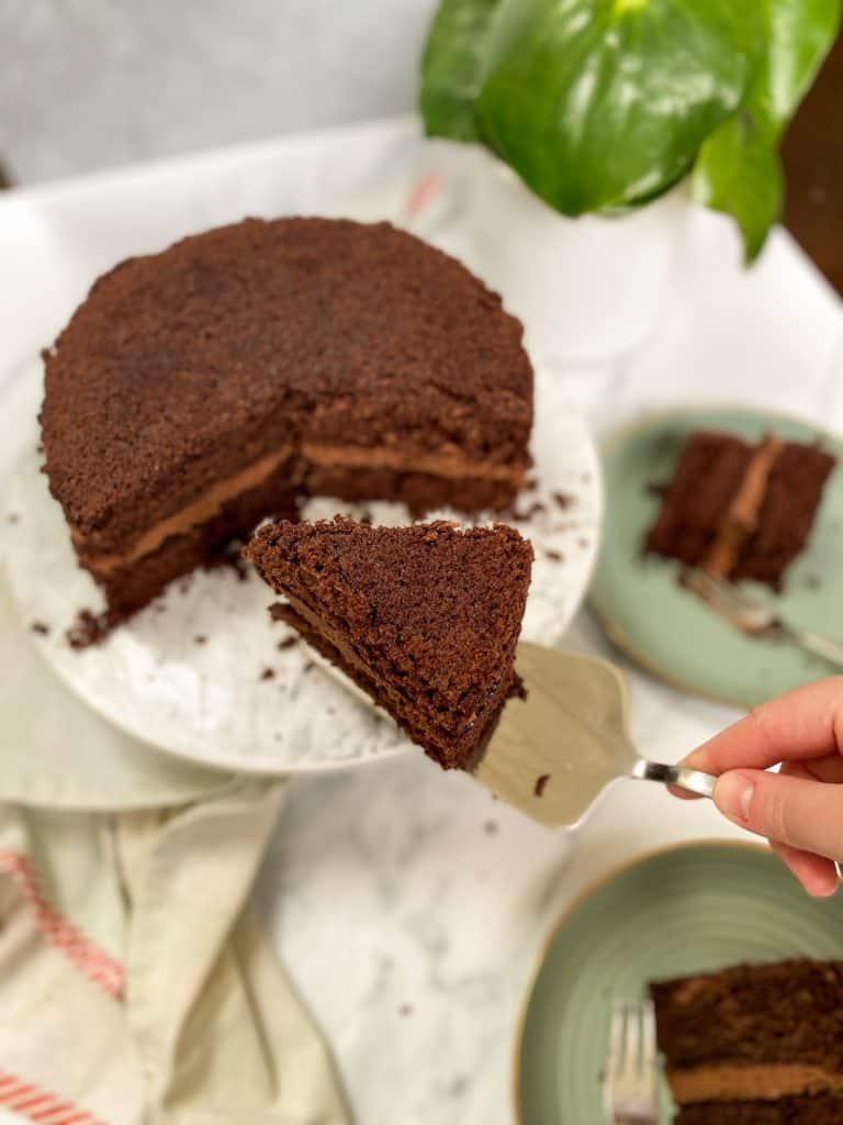 slice of double chocolate cake